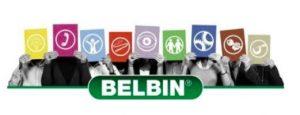 Teambuilding profiling DNA Belbin - Team diagnostics