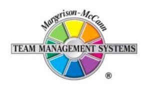 Teambuilding profiling TMS - Team diagnostics